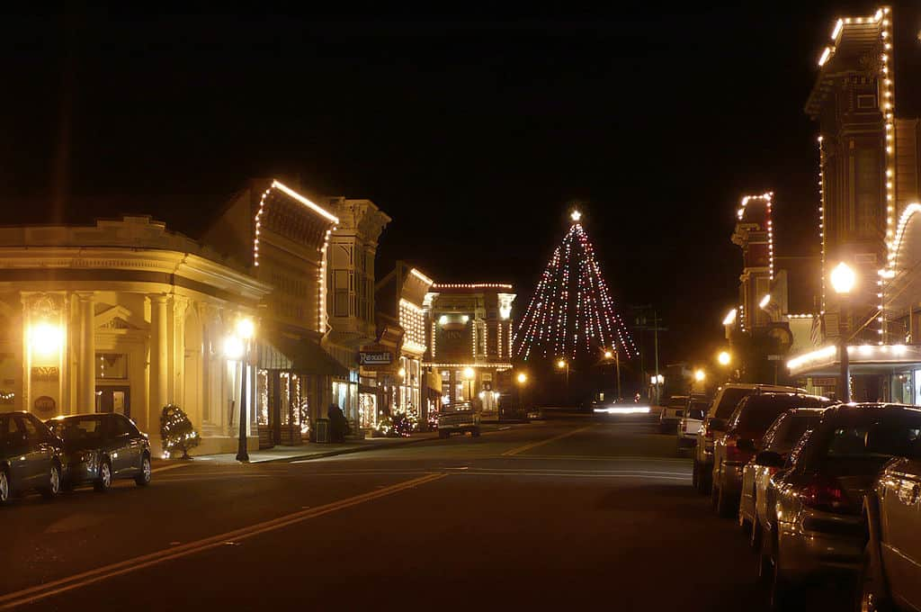 Ferndale Christmas tree