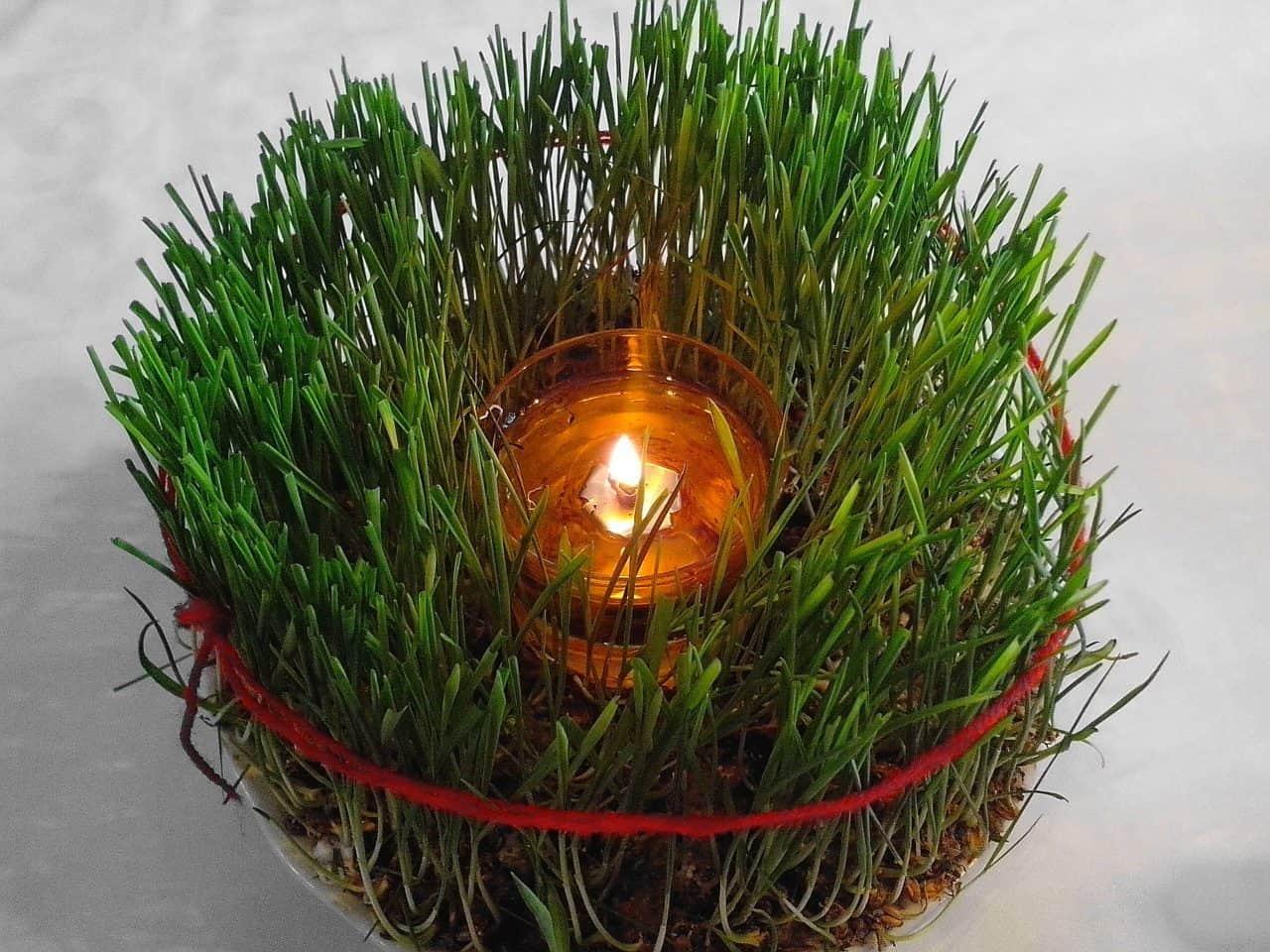 wheat Christmas decoration