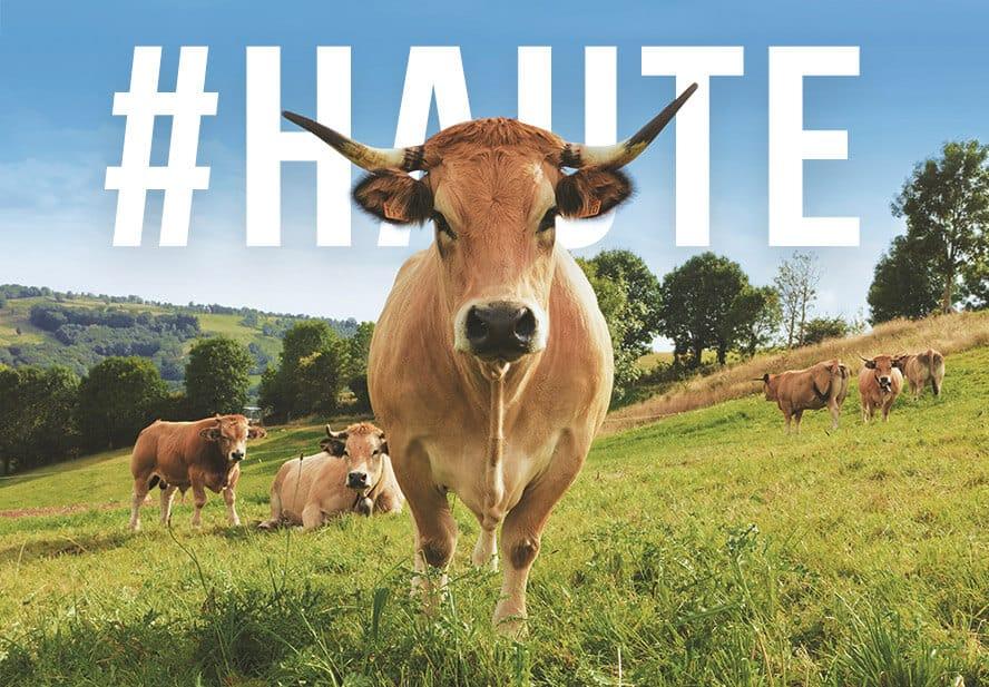 mascot Haute salon de l'agriculture 2018