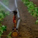 Preserving water resources – one of the major challenges for agriculture in the 21st century