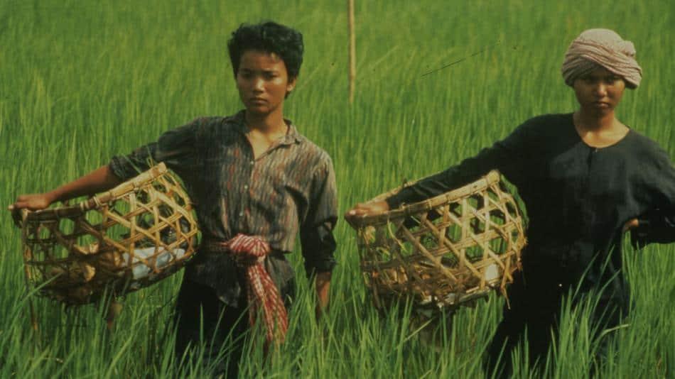 Rice people movie