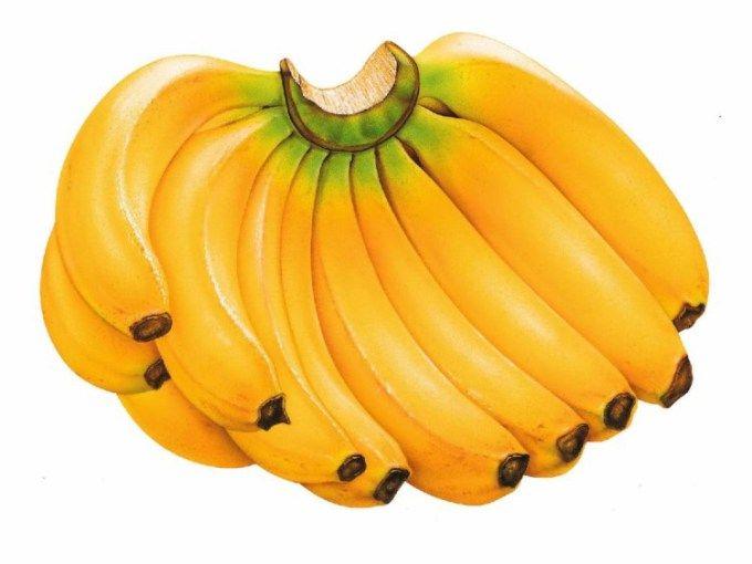 Pisang Raja bananas