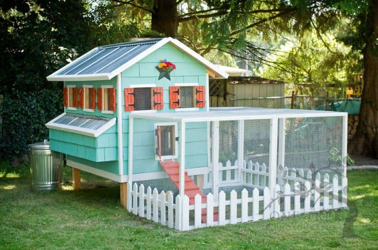 Colorful Chicken Coop