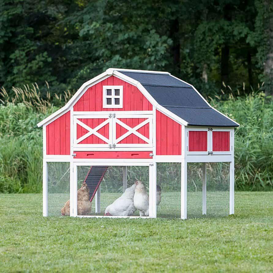 Gambrel Roof Chicken Coop