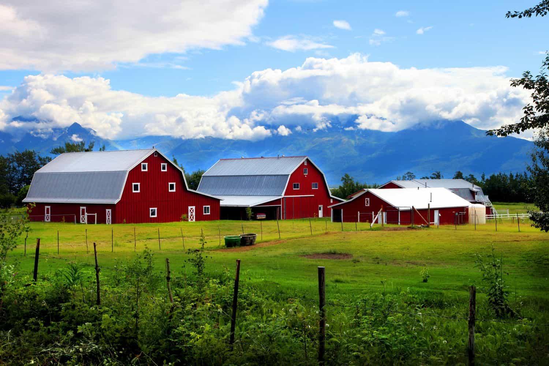 Gislason Farm Alaska
